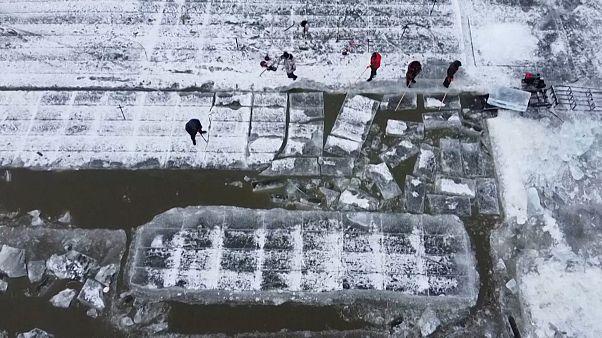 شاهد: بداية تقطيع الجليد استعدادا لمهرجان النحت الشتوي في الصين