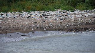 INTERPOL, denizleri kirletenlere savaş açtı: 61 ülkede 17 bin denetleme gerçekleştirildi