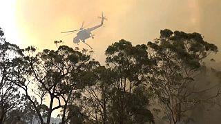 ویدئو؛ بالگرد آبپاش در مهار آتشسوزیهای حومه سیدنی ناکام ماند