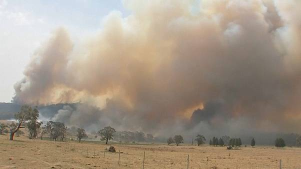State of emergency declared as wildfires rage in Australia