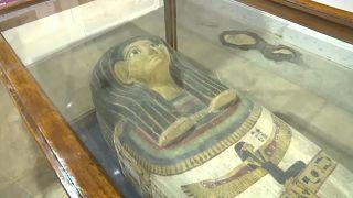 شاهد: افتتاح معرض الحفريات الفرنسية في مصر