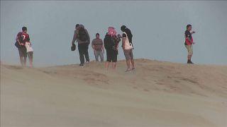 جماهير فلامنغو في صحراء قطر