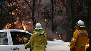 آتش سوزیهای «فاجعه بار» در استرالیا همزمان با موج گرما