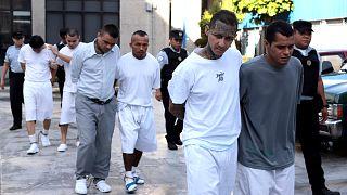 230 MS-13 örgüt üyesi tutuklandı