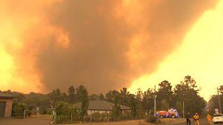 Un muerto más por los incendios en el sur de Australia