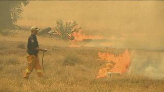 Wildfires are raging across Australia