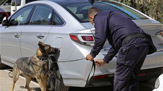 Οι ΗΠΑ σταματούν να προσφέρουν σκυλιά που εντοπίζουν εκρηκτικά στην Αίγυπτο και την Ιορδανία