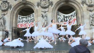 Streikende Schwäne in Paris