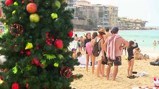 شاهد: كيف يحتفل الأستراليون بعيد الميلاد الصيفي
