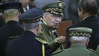 احمد قائد صالح