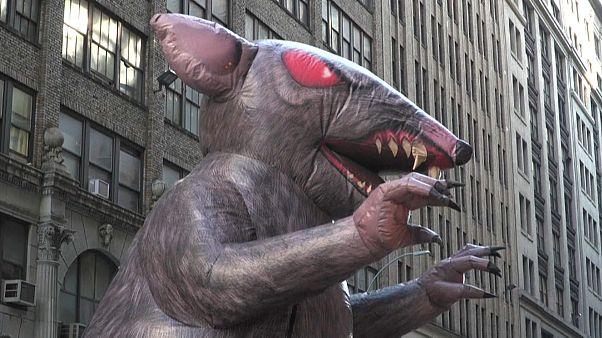 فأر اصطناعي في شوارع نيويورك-26 نوفمبر تشرين الثاني 2019