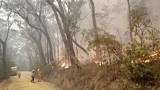 Incendies en Australie : 30 000 personnes invitées à évacuer