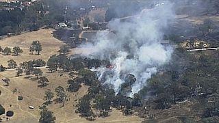 آتش سوزیهای مهار نشدنی استرالیا؛ بسیاری از جشنهای سال جدید میلادی لغو شدند