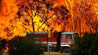 گسترش آتش سوزی در جنوب شرق استرالیا؛ هزاران نفر به ساحل پناه بردند