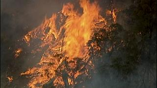 In this image made from video, an aerial scene shows fires burning in Bundoora, Victoria state, Monday, Dec. 30, 2019.