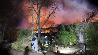 Almanya'da bir hayvanat bahçesinde çıkan yangında en az 30 hayvan can verdi
