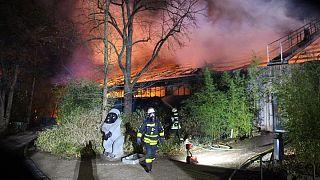 Incêndio no Zoo de Krefeld mata mais de trinta animais