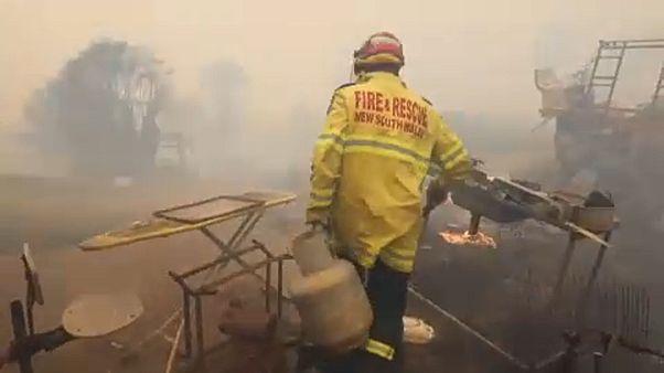 Megmentettek egy állatkertet a bozóttüzek elől Ausztráliában