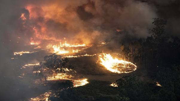Las trágicas cifras e imágenes de los incendios forestales en Australia