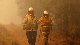 Australia bushfires: What countries have offered international aid?