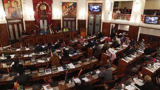 Bolivya'da iptal edilen başkanlık seçimleri 3 Mayıs'ta genel seçimlerle birlikte düzenlenecek