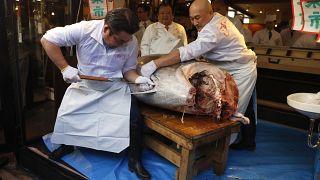 طاهي سوشي يقطع سمكة التونة ذات الزعانف الزرقاء في مطعم في سوق تسوكيجي في طوكيو، 5 يناير 2020 ، بعد بيعها في أول مزاد عام 2020 في سوق أسماك تويوسو بطوكيو.