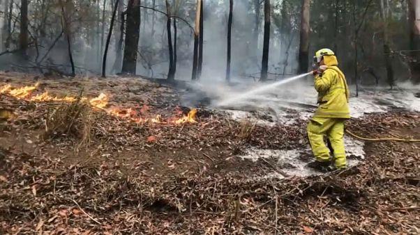Fogos continuam a deixar rasto de destruição na Austrália