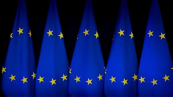 سخنگوی اتحادیه اروپا به یورونیوز: اتحادیه تصمیمگیرنده برجام نیست، هماهنگکننده است