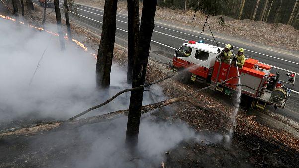 """Morrisons düstere Prognose: Buschfeuer werden """"noch Monate brennen"""""""