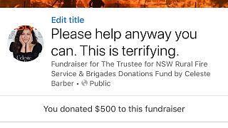 Celeste Barber rief im Internet zu Spenden für die Feuerwehr in New South Wales auf