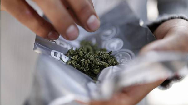 هشدار پزشکان نسبت به مصرف ماریجوانا: قانونی بودن دلیل ایمن بودن نیست