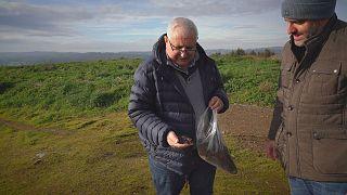 Organische Abfälle werden als Kompost wiederverwertet