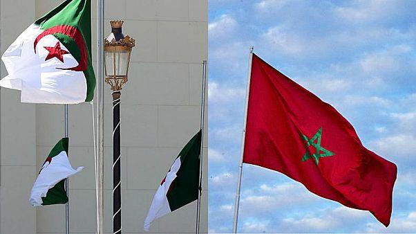 """الجزائر تصف قرار غامبيا بفتح قنصلية في الصحراء الغربية بـ""""الاستفزازي"""""""