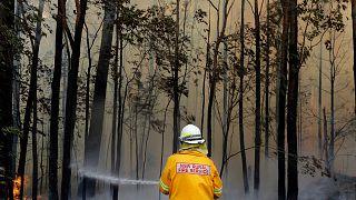 Avustralya'da yangın tehdidine karşı bazı bölgelerde tahliye kararı alındı