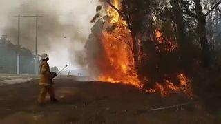 Австралийский штат Виктория снова объявил чрезвычайное положение