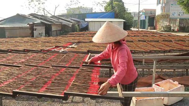 «دهکده عود» در ویتنام؛ تولید چوبهای عود برای سال نو چینی