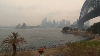 Sydney Opera House lit up in tribute as Australia wildfires claim another victim