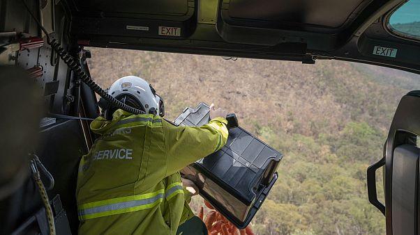Avustralya'da yangınların ortasında mahsur kalan hayvanlara havadan gıda yardımı