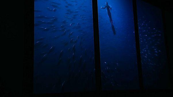 Oceanário de Lisboa apresenta exposição imersiva
