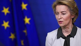 European Green Deal: Brussels unveils €1 trillion plan to make EU carbon neutral by 2050