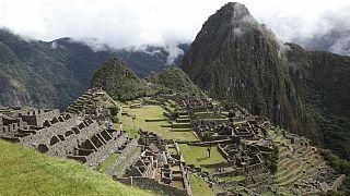 عزم مقامات پرو برای کاشت ۱ میلیون درخت در منطقۀ باستانی ماچو پیچو