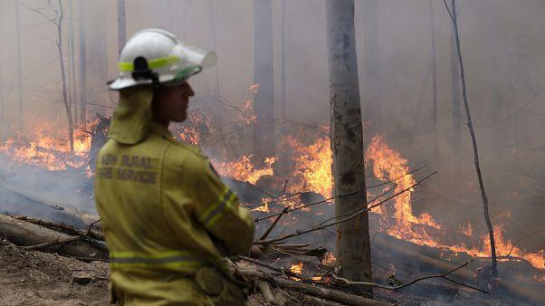 Αυστραλία: Βροχοπτώσεις ανακουφίζουν πυρόπληκτες περιοχές