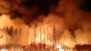 https://en.wikipedia.org/wiki/Wildfire