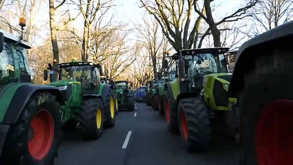 "Kilometerlange Treckerproteste: ""Wir verlieren jede Menge Höfe"""