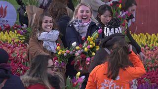 Άμστερνταμ: Η Ημέρα της Τουλίπας