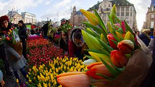 Dam tér, Amszterdam