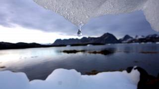 The Brief: 2020 - the most critical year yet for climate diplomacy