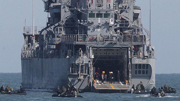 کره جنوبی بالگرد، ناوشکن و سرباز به تنگه هرمز میفرستد
