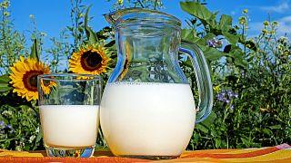 دراسة: استهلاك الحليب كامل وعالي الدسم يسرع الشيخوخة