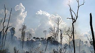 (Arquivo) Incêndio na região amazonica do Estado do Pará em Agosto de 2019